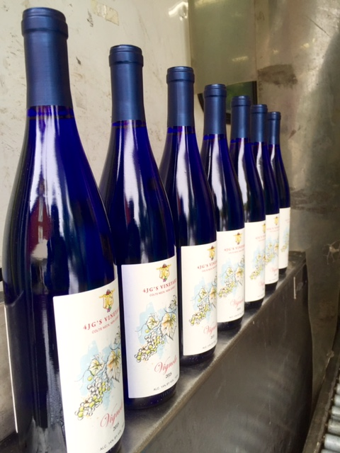 Vignole 2015 is in the blue bottle and will be on the tasting table soon