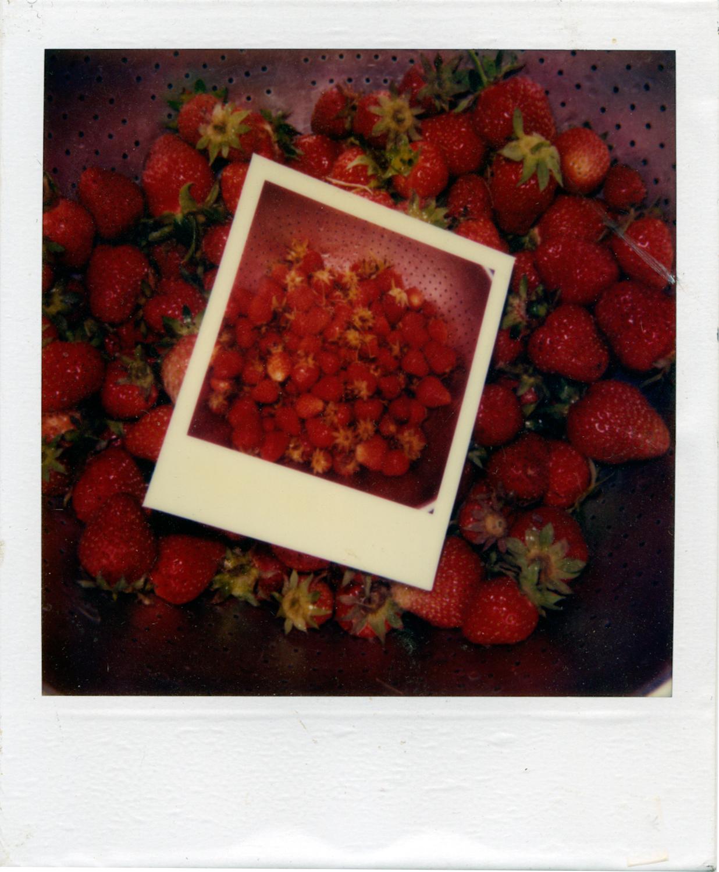 Strawberry1-2.jpg