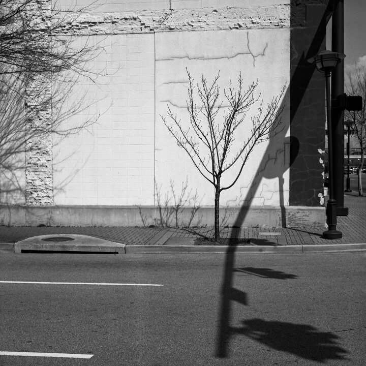 Intersection with tree, exhibition print