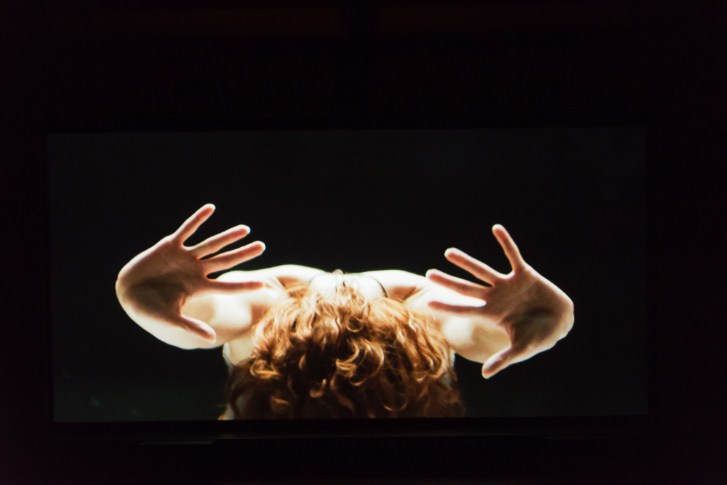 TRIPTYCH  World Premiere, April 2015 Photo by Dariel Sneed & Zac Halbred