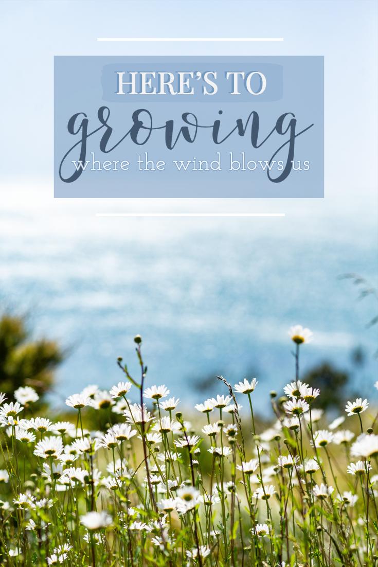 wind blows.jpg