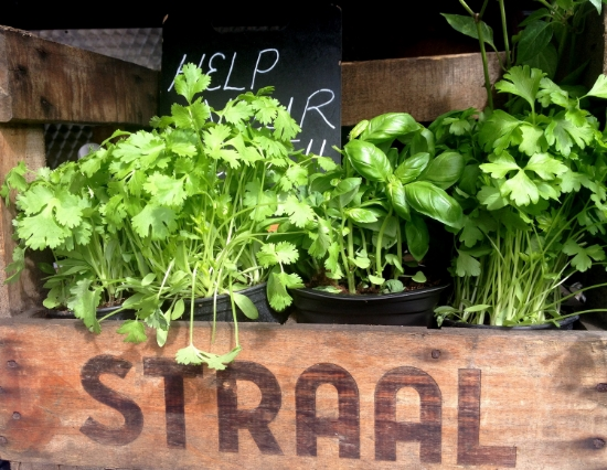 Help yourself herbs at a sub food truck.