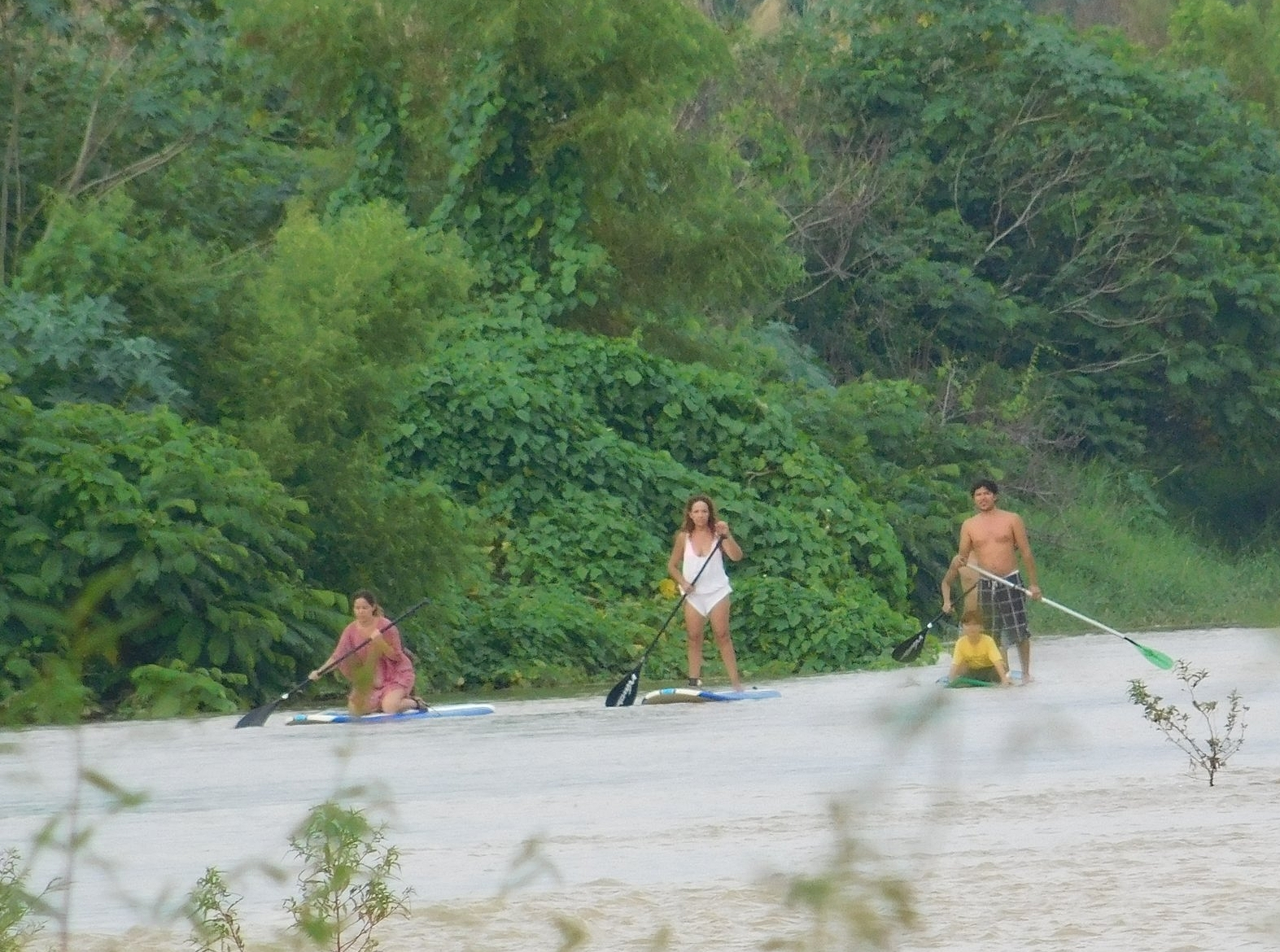 Guided SUP Tour - Balance // Challenge // ExploreStand Up Paddleboarding is a fantastic way to connect with your surroundings.