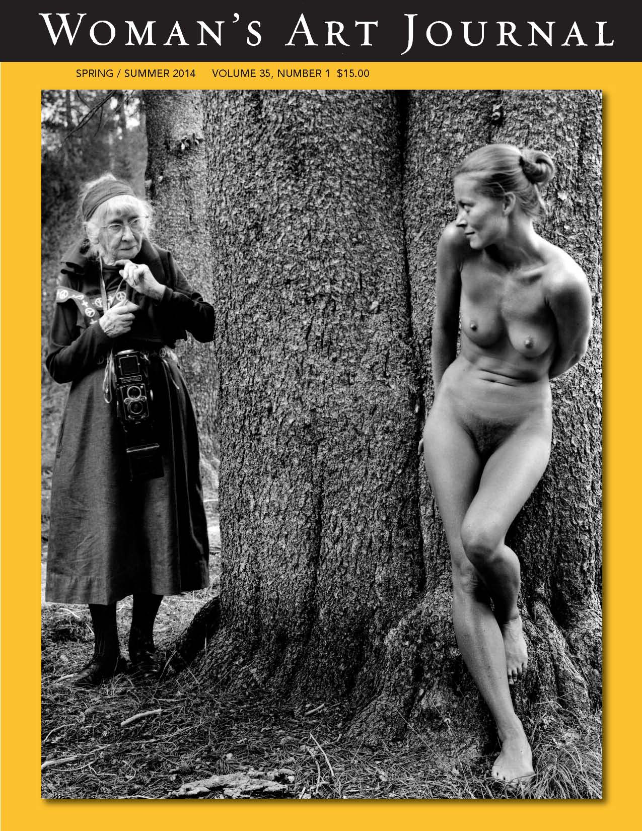 Women's Art Journal, Spring/Summer 2014, article