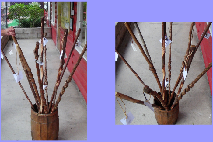 Walking sticks ... with mystery hand.