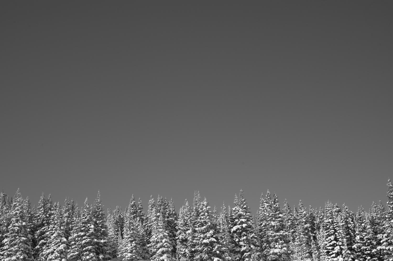 kw_snowmass_130227_2528.jpg