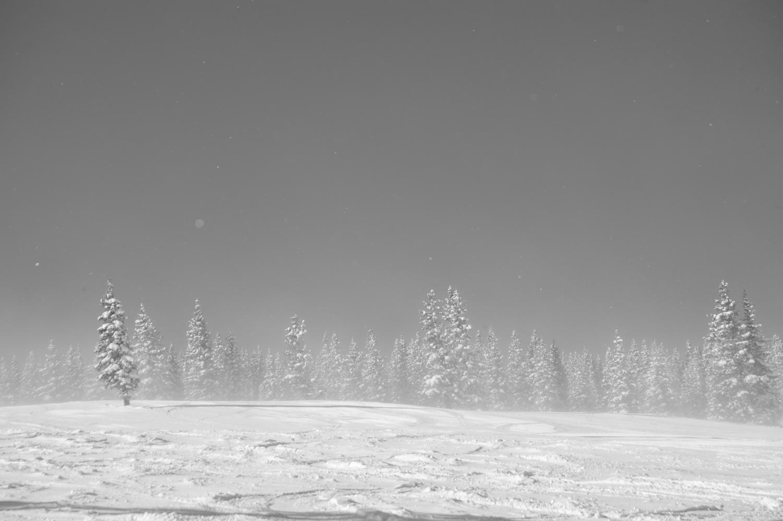 kw_snowmass_130227_2582.jpg