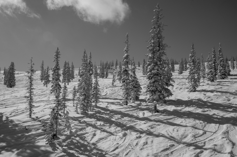 kw_snowmass_130227_2667.jpg