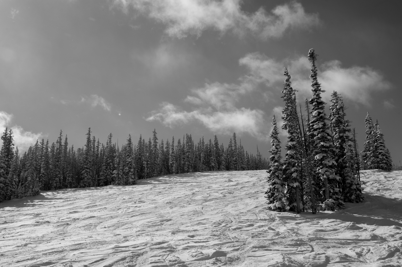 kw_snowmass_130227_2659.jpg
