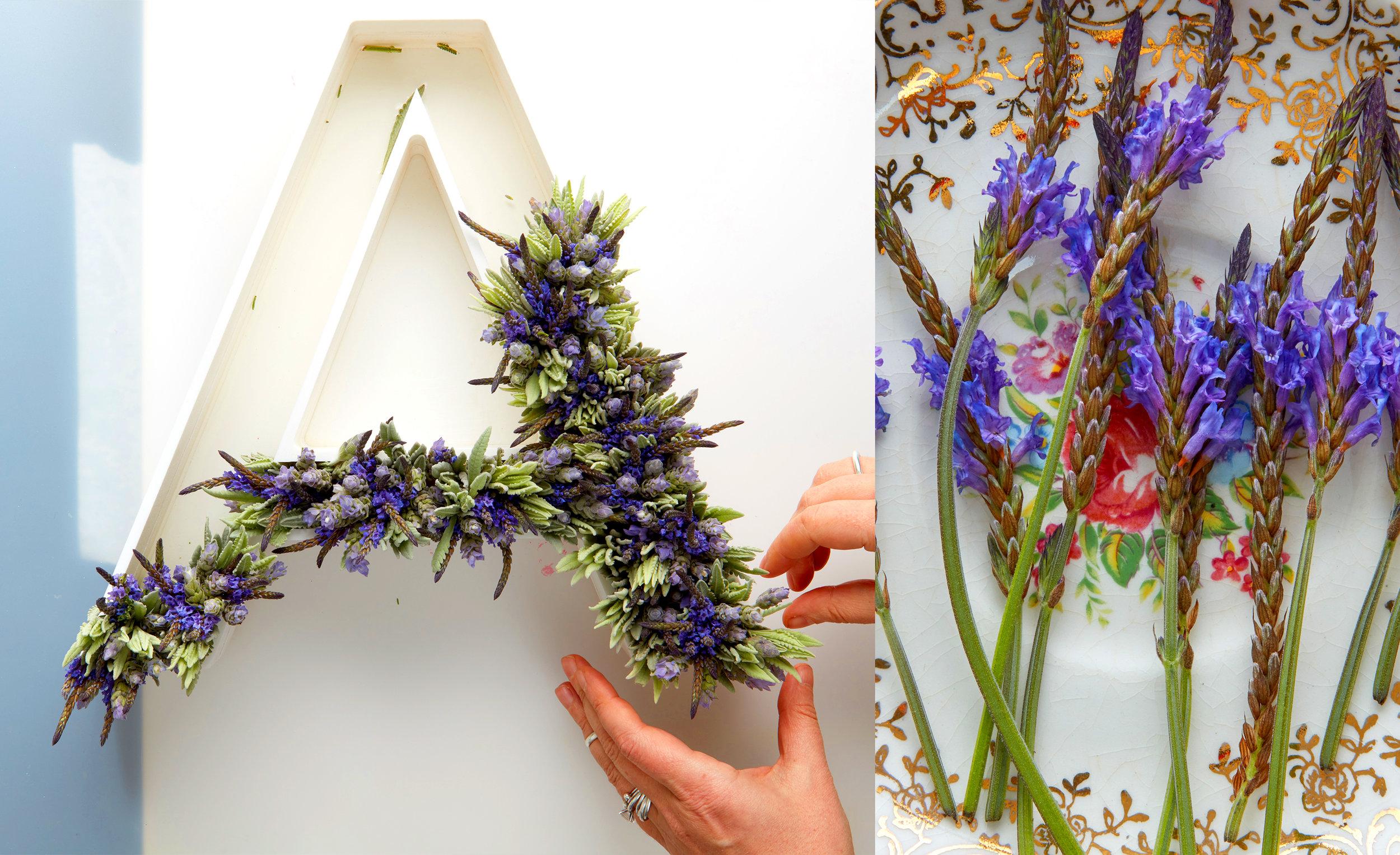 FlowerType2.jpg