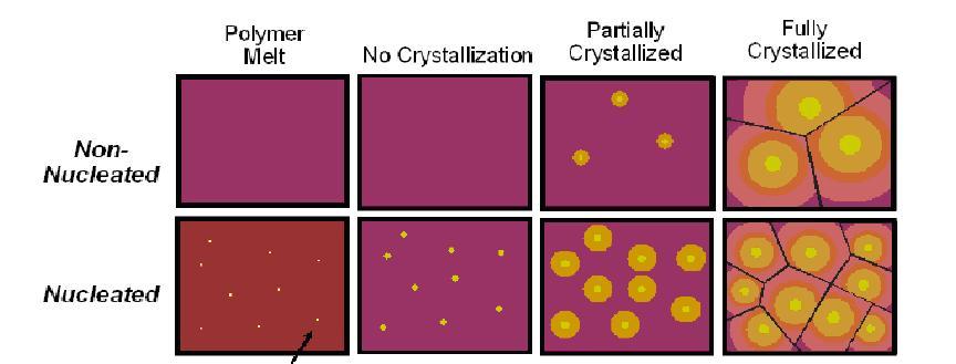 黃色代表分子的有序排列程度,即為結晶「Crystalline」。圖的下列可看出,經過增核之後,由於晶核增加,最後形成的結晶多且小。