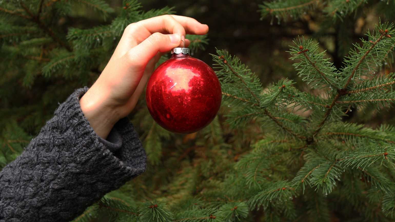 decorating_for_christmas.jpg