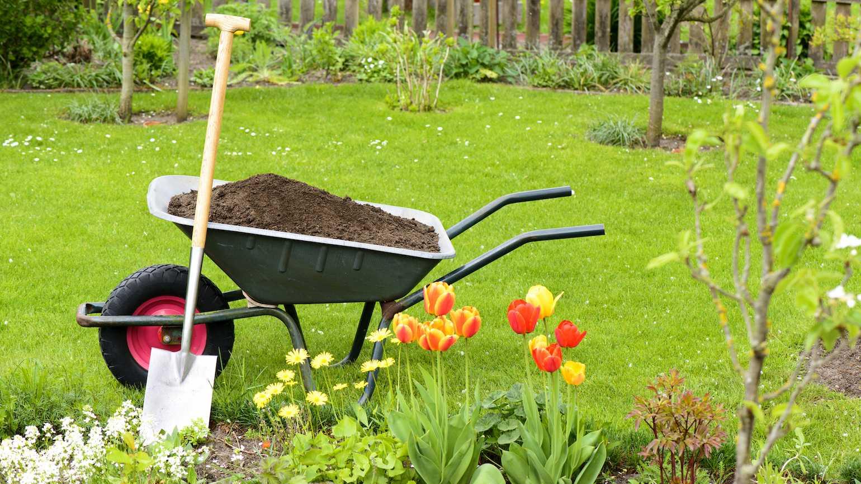 gardening_is_like_life_0.jpg