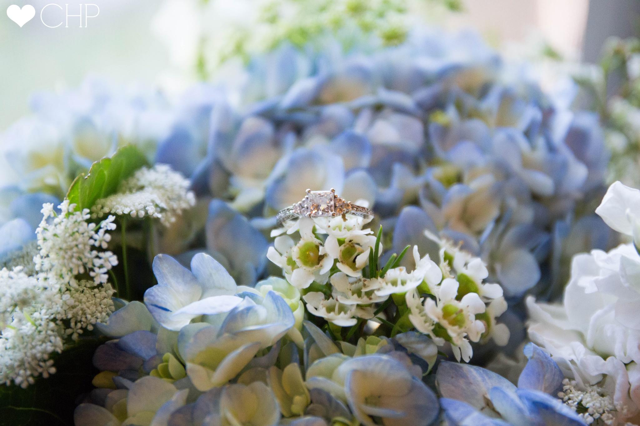 Wedding Photographers around Rockport Maine
