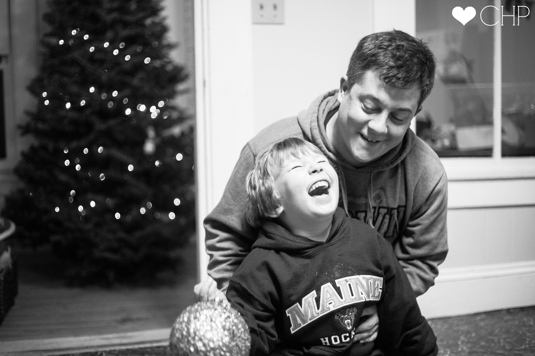 Maine-Christmas-Tree