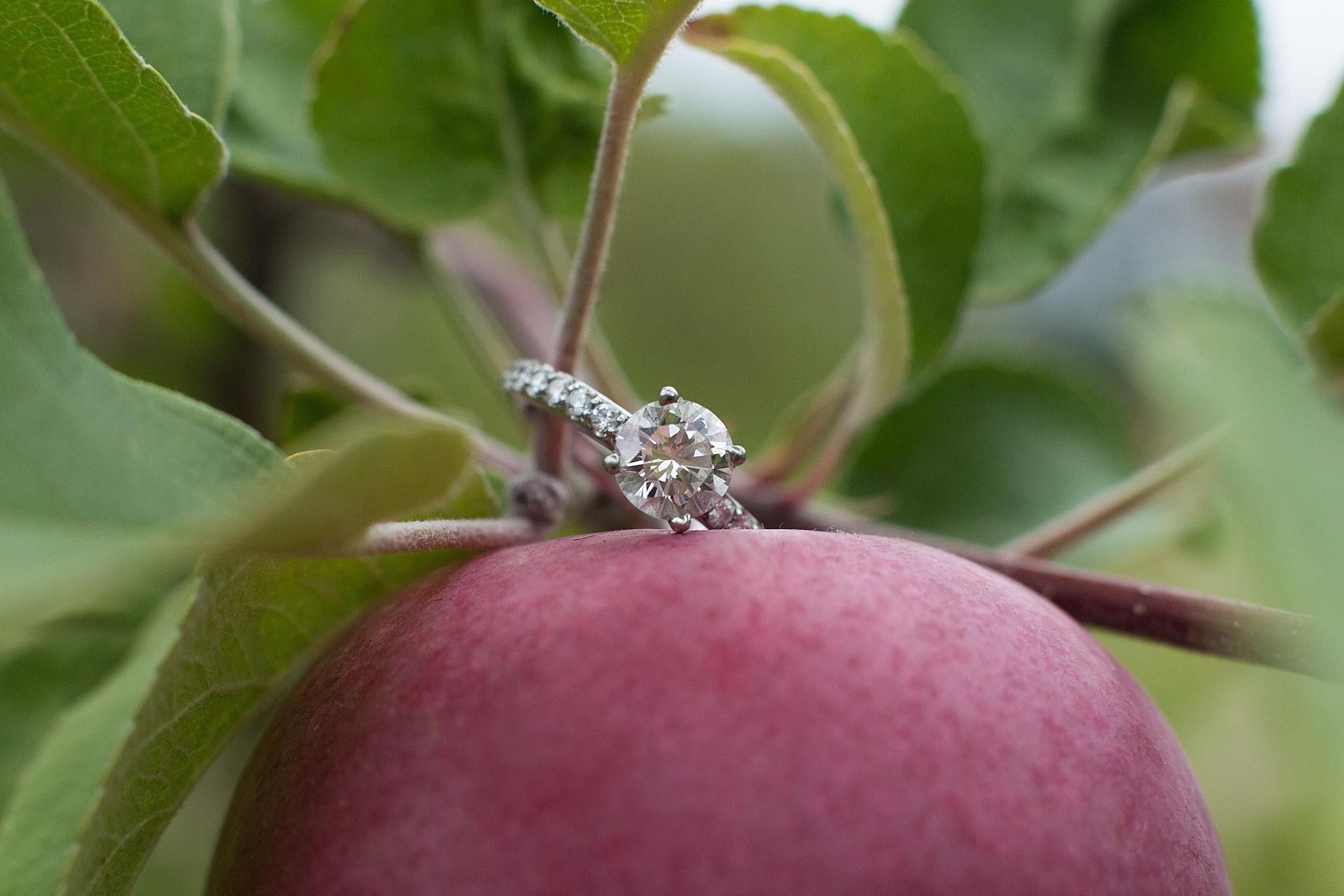 Bangor-Maine-Engagement-Photography
