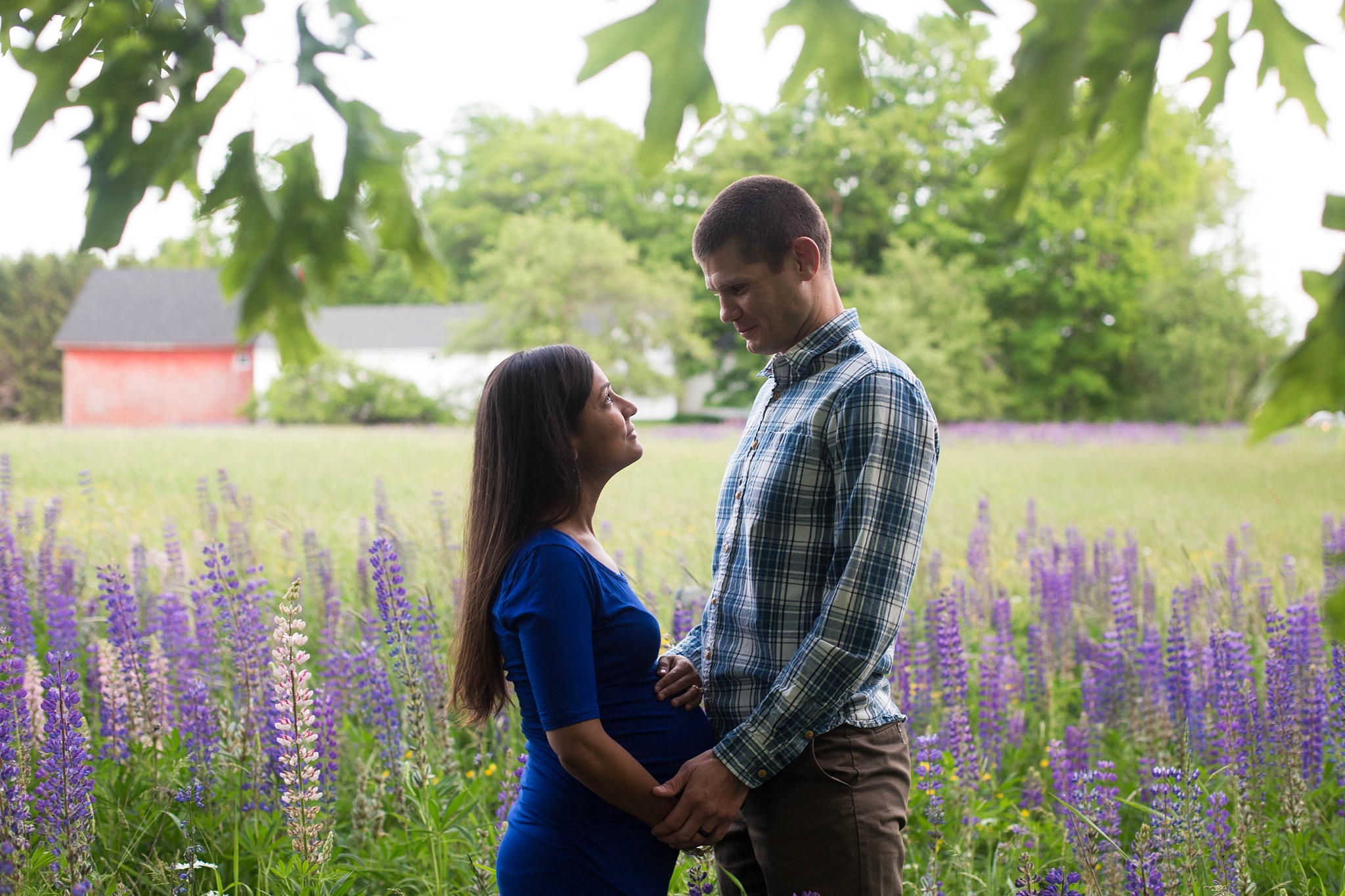 maine maternity pictures