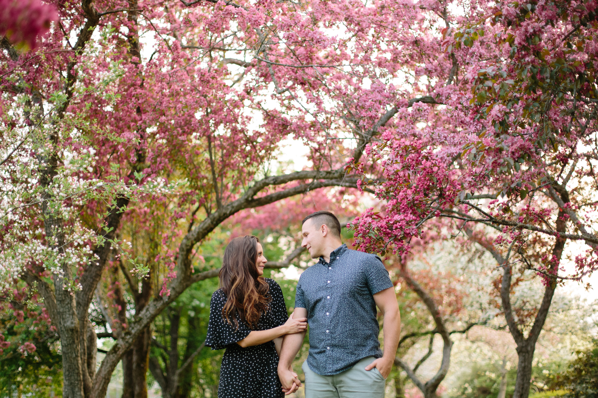 Engagement Photographers in Maine