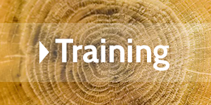 Infos zum Training