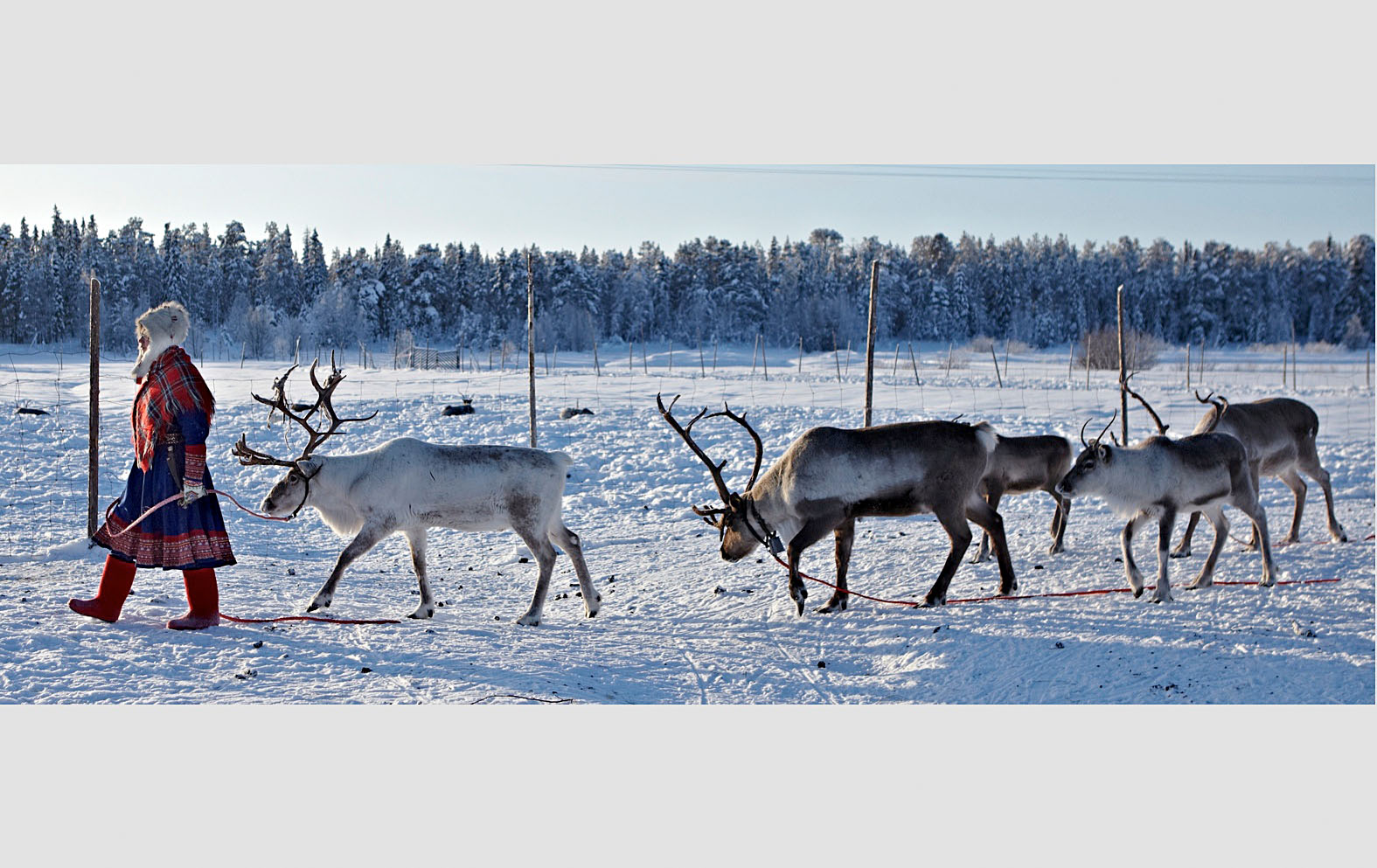 Lapland_travels_©PepAvila.183.jpg