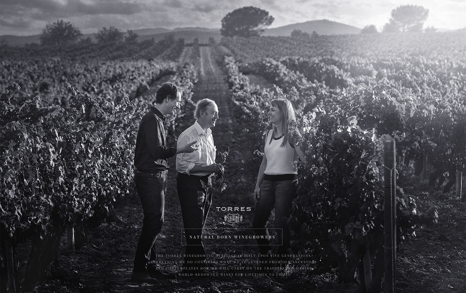 TORRES, FAMILY PORTRAIT. WINEGROWERS.