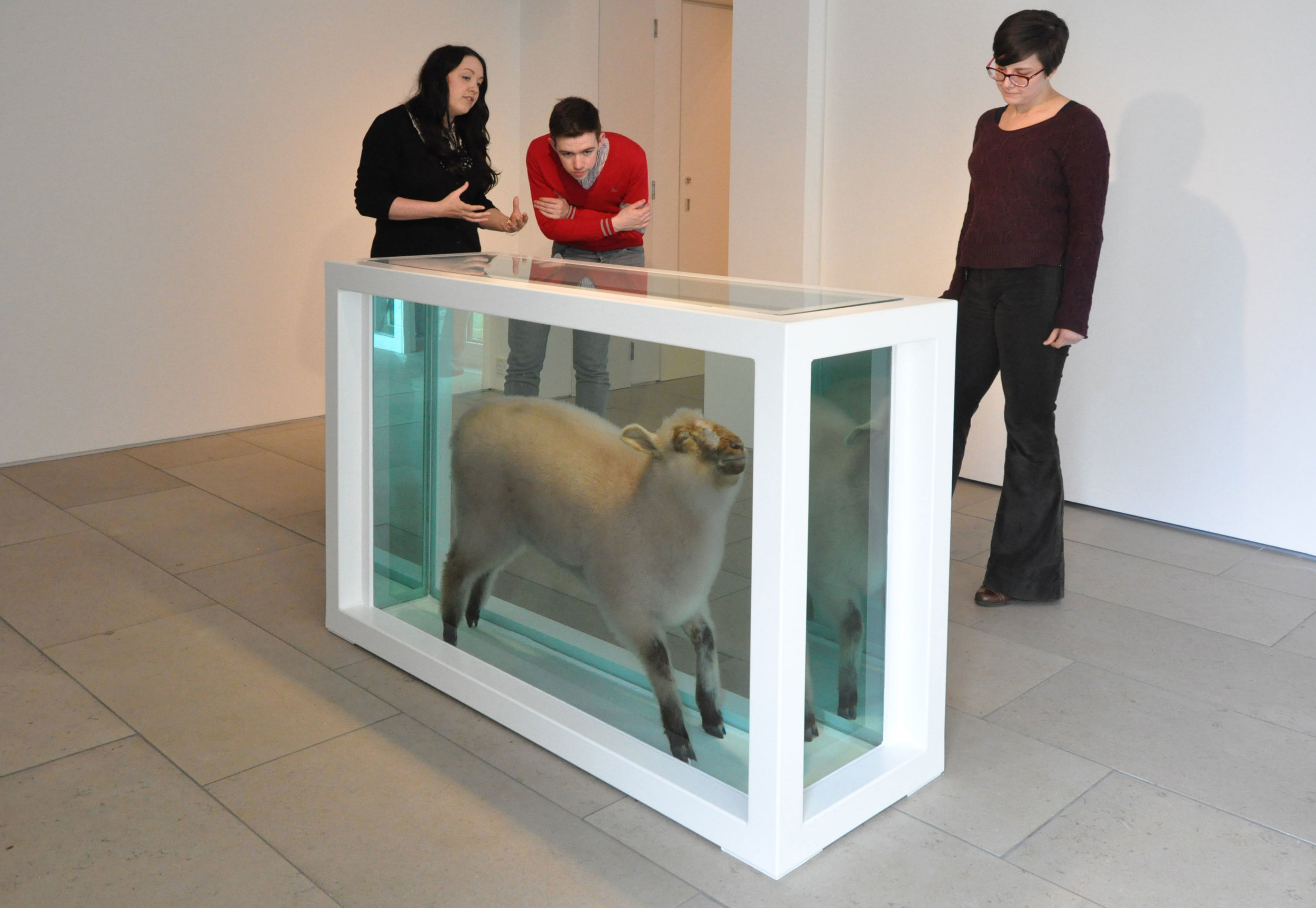 Damien Hirst exhibition tours