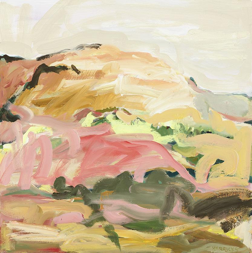 Broken Hill Desert Park II