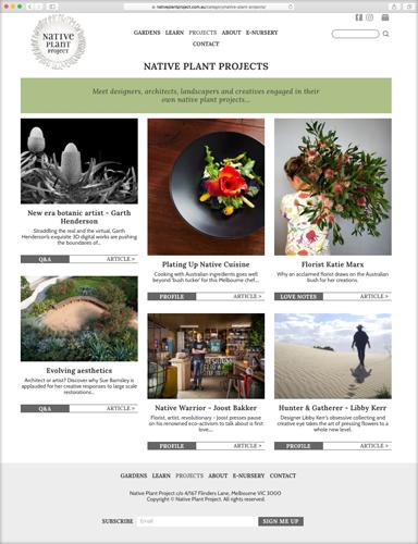 nativeplantproject.com.au   Q&A  New Era Botanical Artist