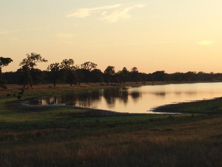 patterson lake 2.jpg