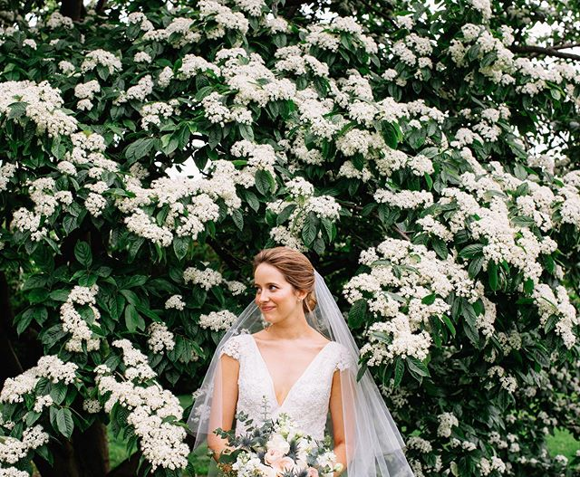 Amy in the flowers at New York Botanical Garden 🌿 . . . . . . . . . . . . . . . . . . . #newyorkbotanicalgarden #newyorkweddingphotographer #brooklynweddingphotographer #brooklynwedding #100layercake #bhldnbride #bridesmagazine #marthastewartweddings #nycwedding #nycweddingphotographer #springwedding #theknotrealweddings #verawangbridal #pronoviasbride #wellwedmagazine #wedphotoinspiration #weddinginspo #weddinginspiration #brideportrait #newyorkbride #bohemianwedding #bohemianweddingdress #indiebride #hippiebride #modernwedding #destinationweddingphotographer #losangelesweddingphotographer #belovedstories #loveauthentic