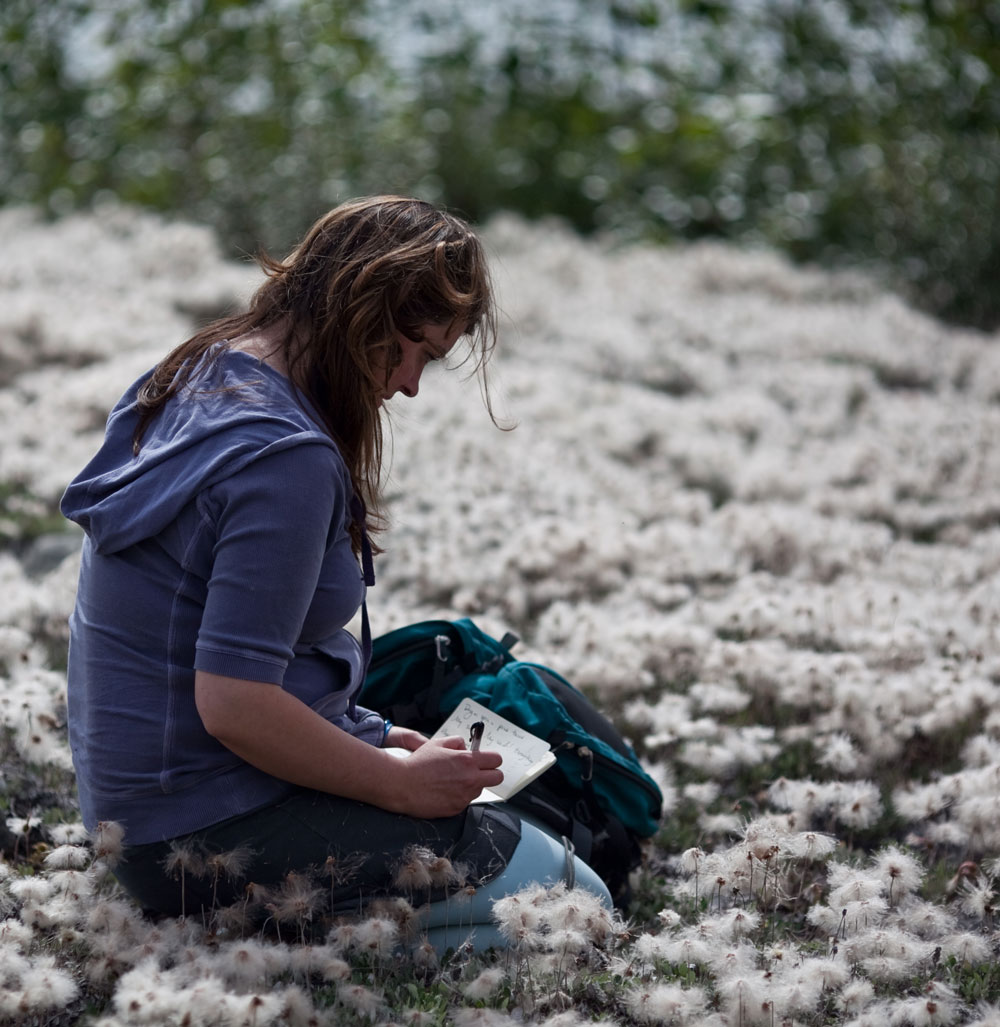 Writing in a field of Dryas plants  Photo: Nathaniel Wilder