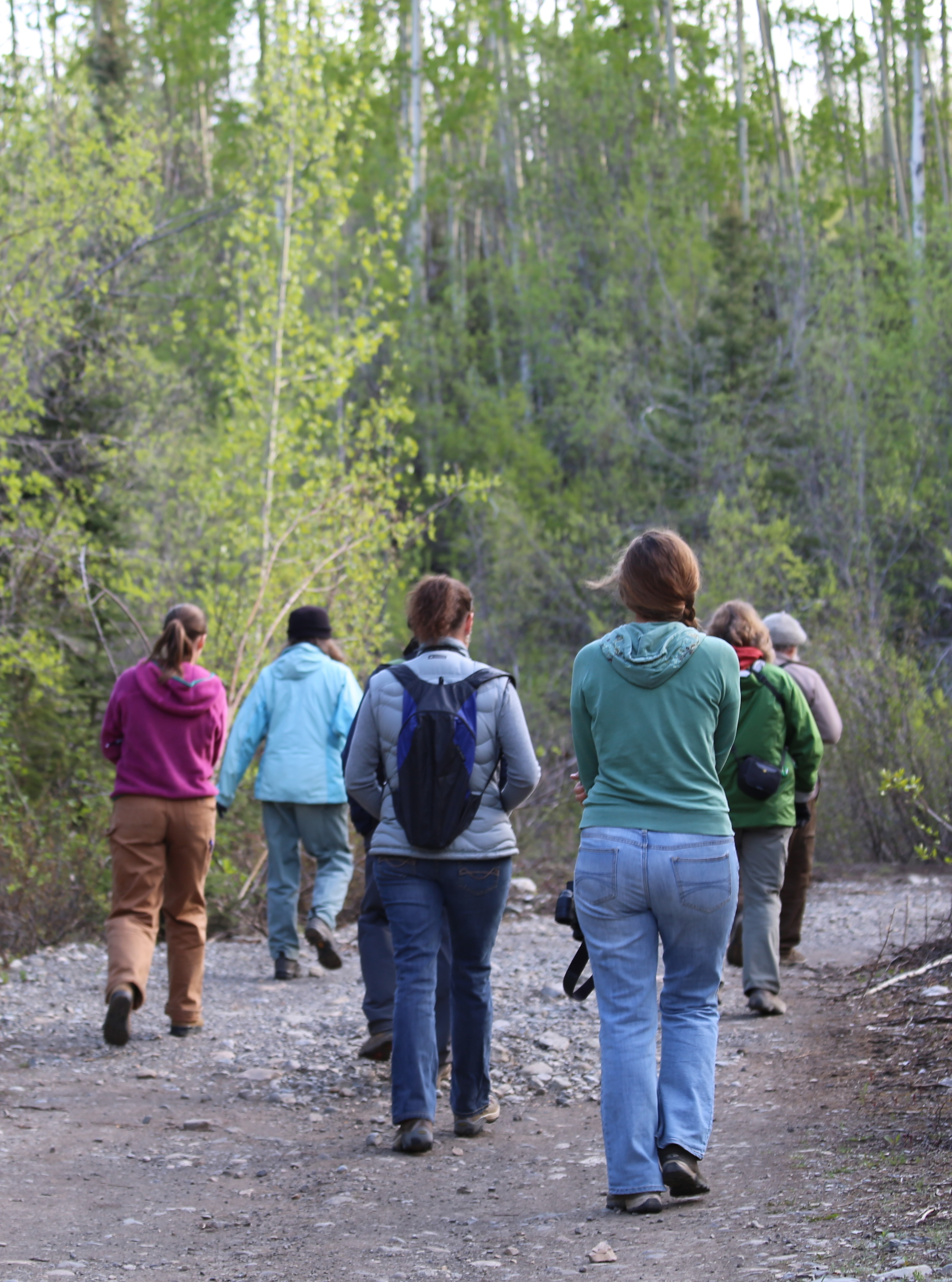 Birders headed down the trail. Photo by Leanne Phelps.