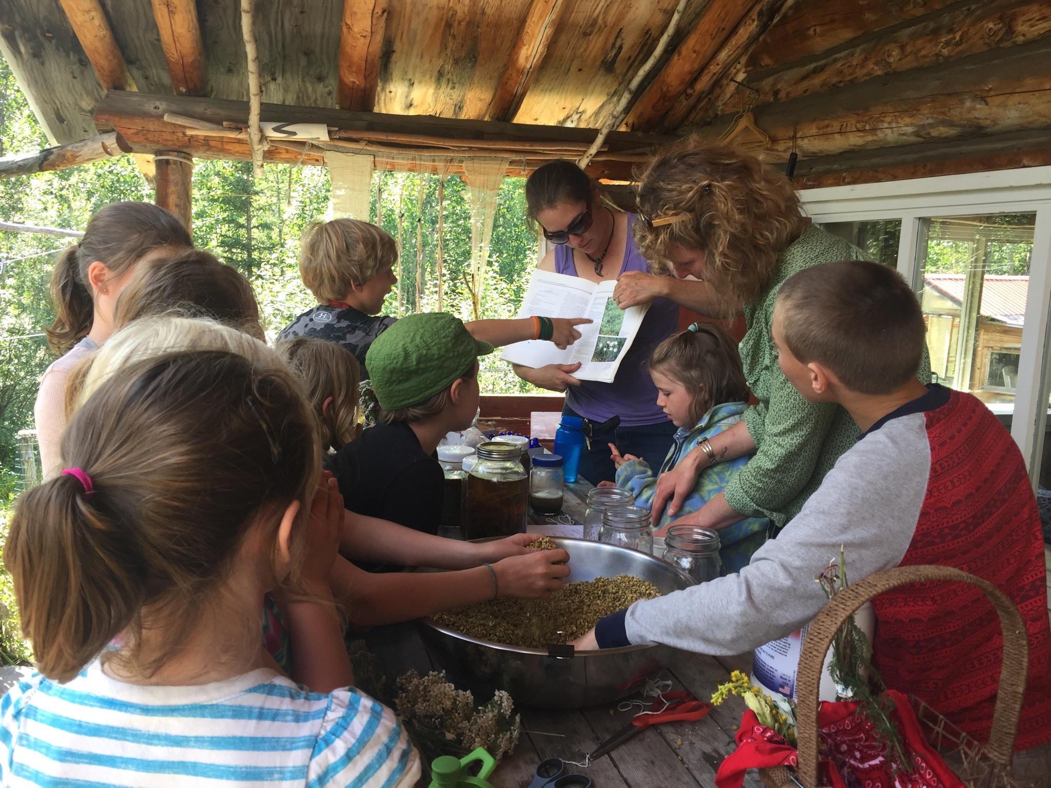 2017 Mountain Arts & Science for Youth - Photo: Lara Applebaum