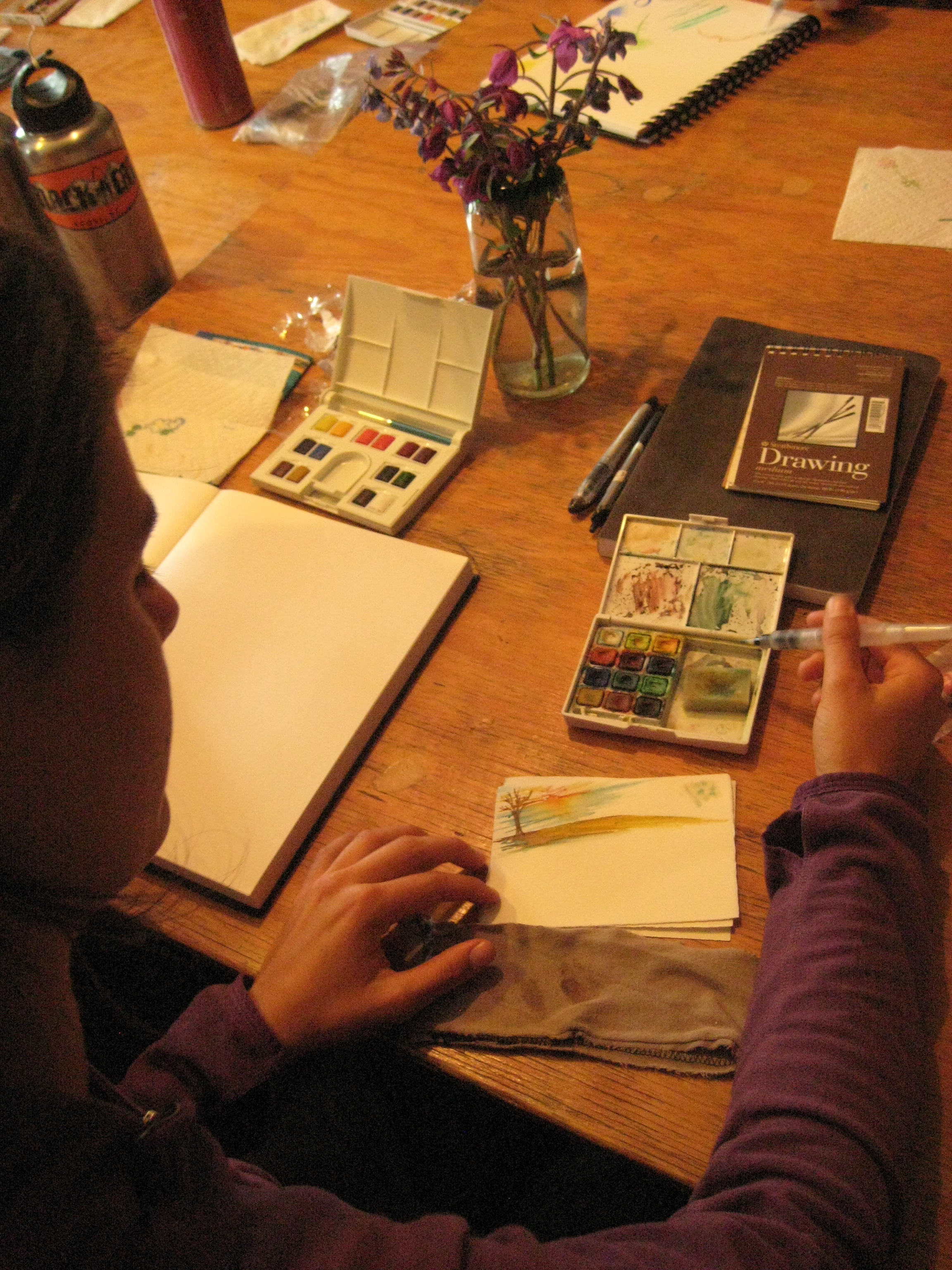 Field illustration is an important part of learning to be a naturalist