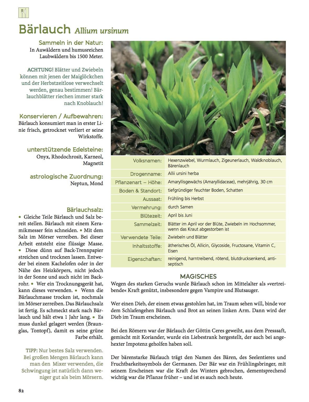 Auszug_Baerlauch_und_giftige_Doppelgaenger_Die_Kraeuter_in_meinem_Garten_Freya_Verlag.jpg