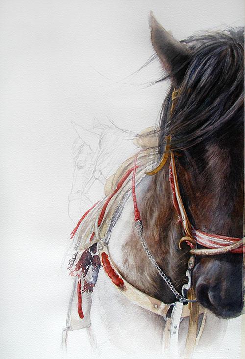 mexican-horse2_500.jpg