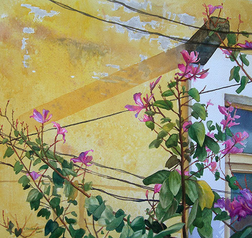 yellow-walls-with-flowers1_500.jpg