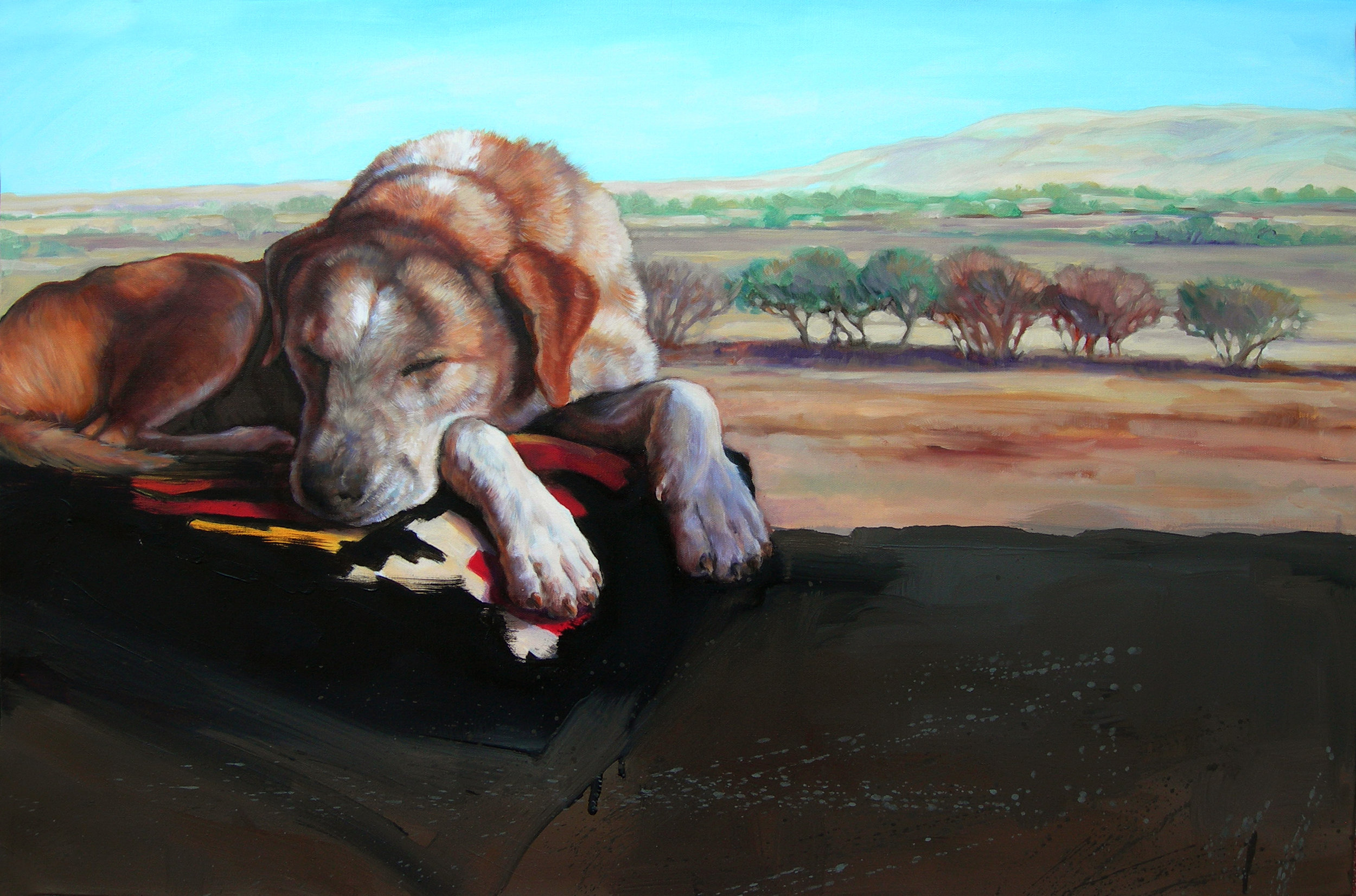 Napo, Oil on canvas