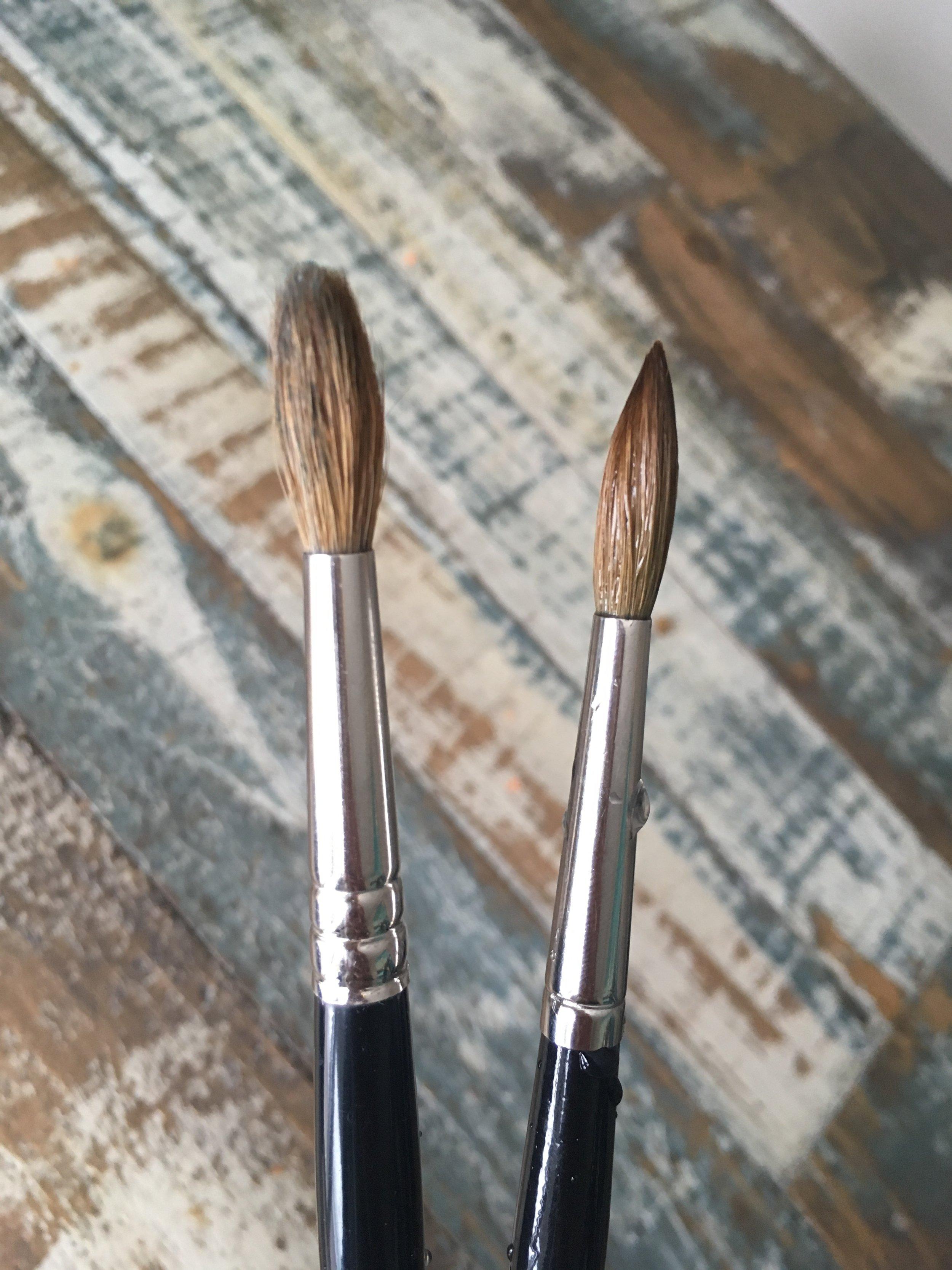 Dry Kolinsky Sable (left)                      Wet Kolinsky Sable (right)