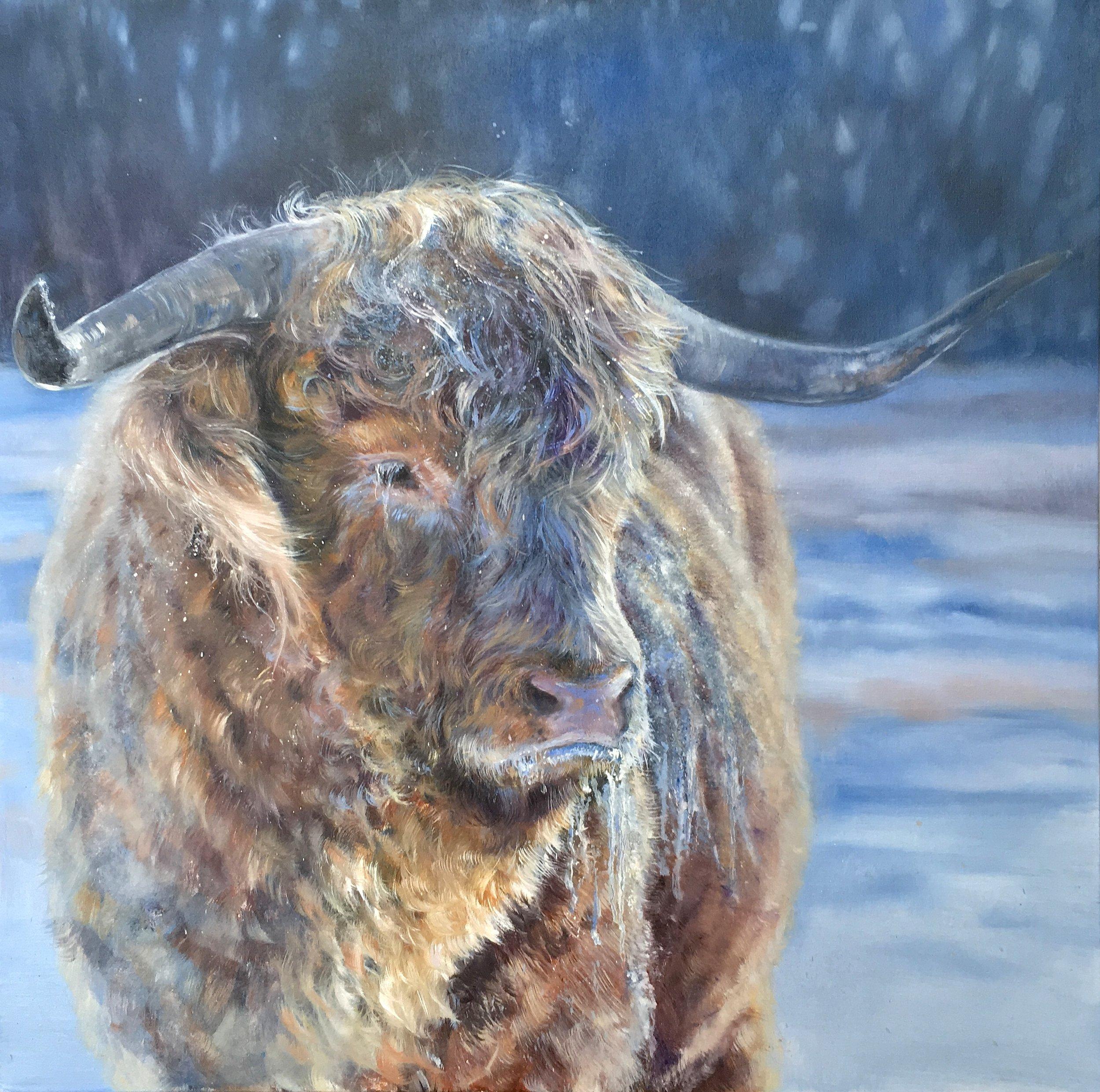 """""""Everybody loves Raymond"""" oil on canvas  30x30"""