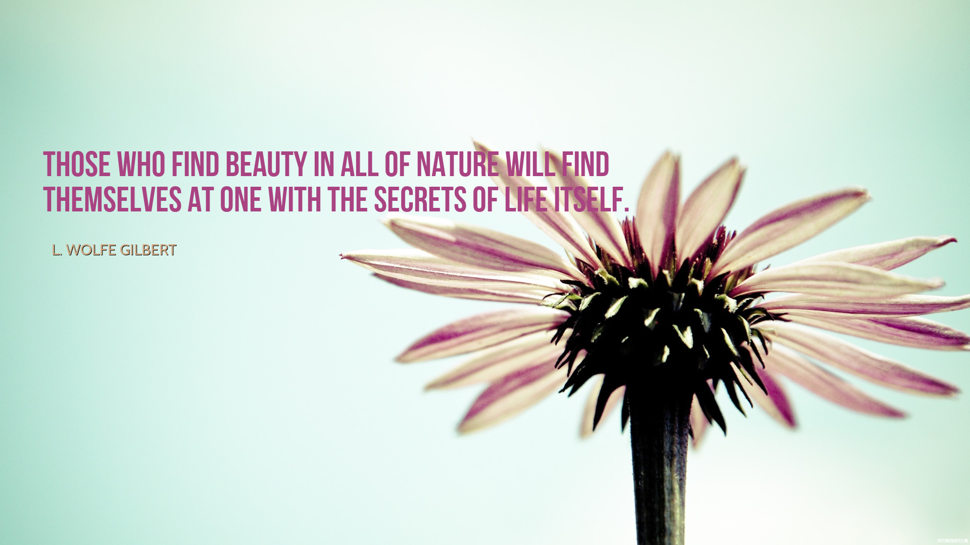 l_wolfe_gilbert_quote_those_who_find_beauty_in_all_of_nature_will_find_themselves_at_one_with_the_secrets_of_life_itself_5929-1.jpg