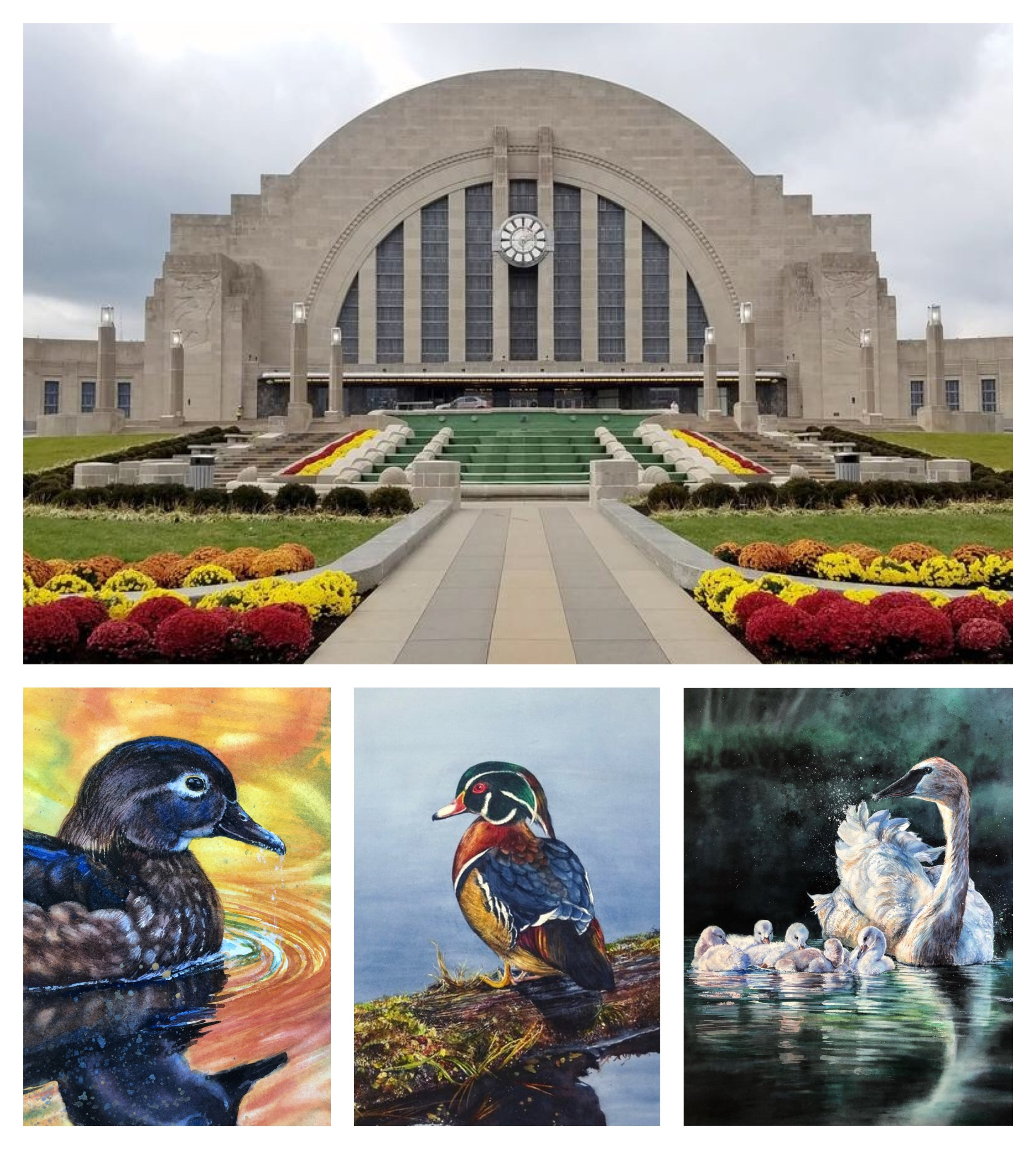 In the Audubon Tradition… - 3 of my pieces will be exhibited at the the newly renovated Cincinnati Museum Center which is celebrating the 200th anniversary of its Museum of Natural History & Science. Founded in 1818 as the Western History Society, its doors opened in 1820. Its first employee was famed naturalist and artist, John James Audubon.Honouring the Legacy of John James Audubon. Featuring 75 - 100 of the top North American Bird & Wild. Being heralded as 2019's most prestigious/important event in the museum history. The 200th Anniversary of CMC celebrates the marriage of art and science.Exhibition Dates: September 12-25th 2019Location:Cincinnati Museum Center1301 Western Avenue Cincinnati Oh 4520