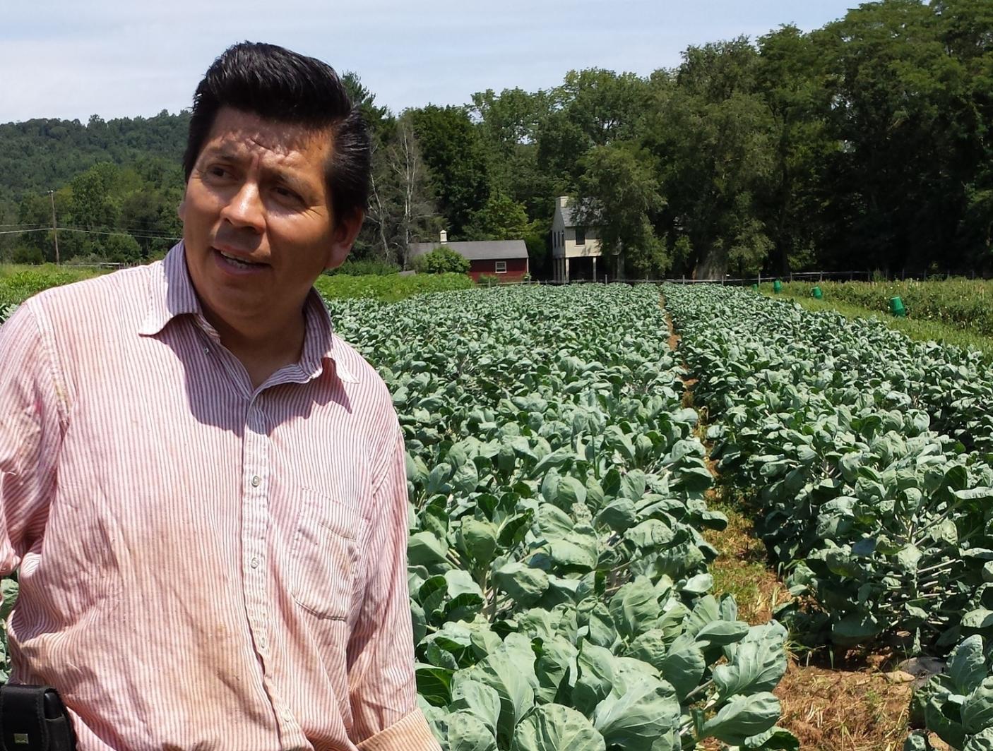 Jersey Farm Produce Diversified Fruit & Vegetable Pittstown, NJ