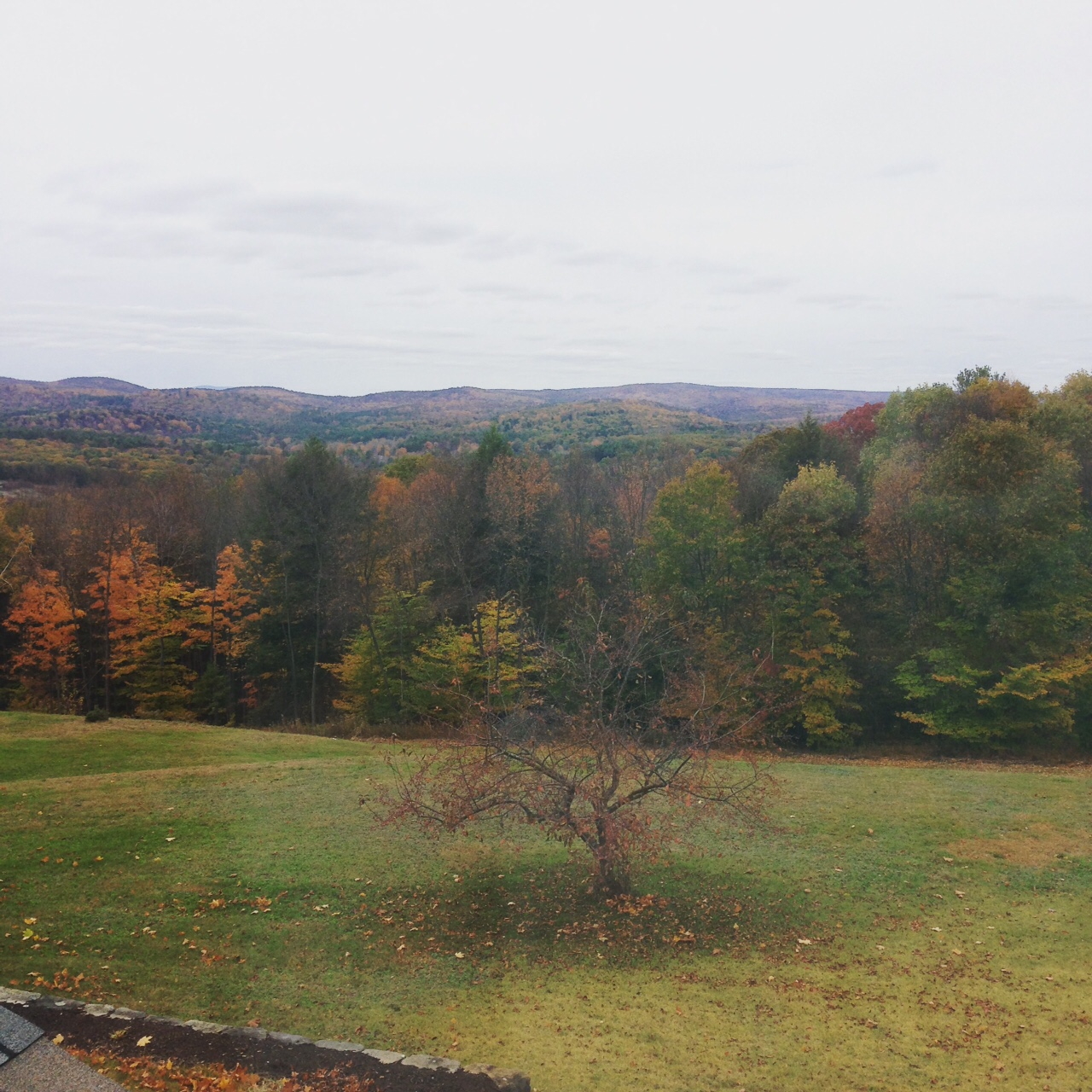View out the guest room window in New Hampshire
