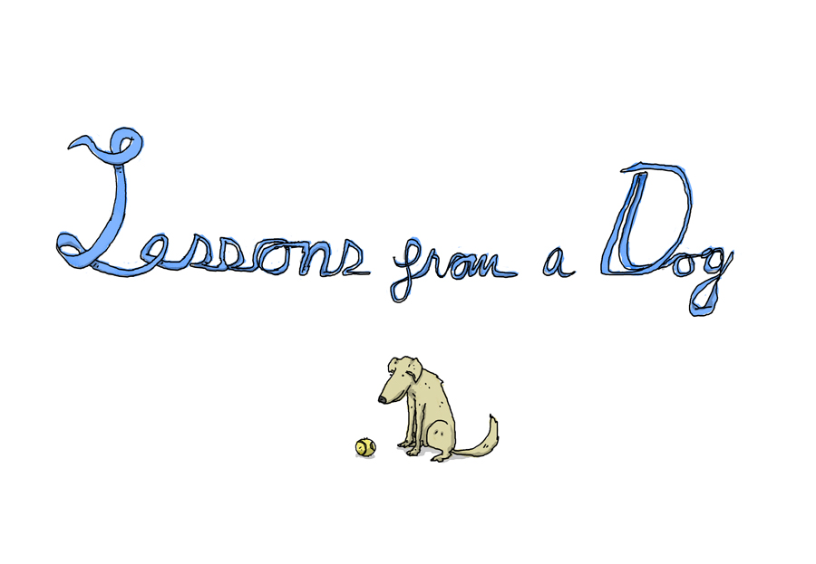 lessons-from-a-dog-1.jpg