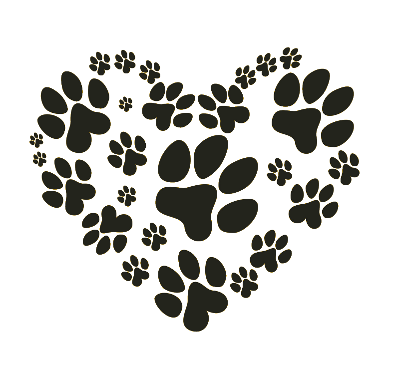 paws for us.png