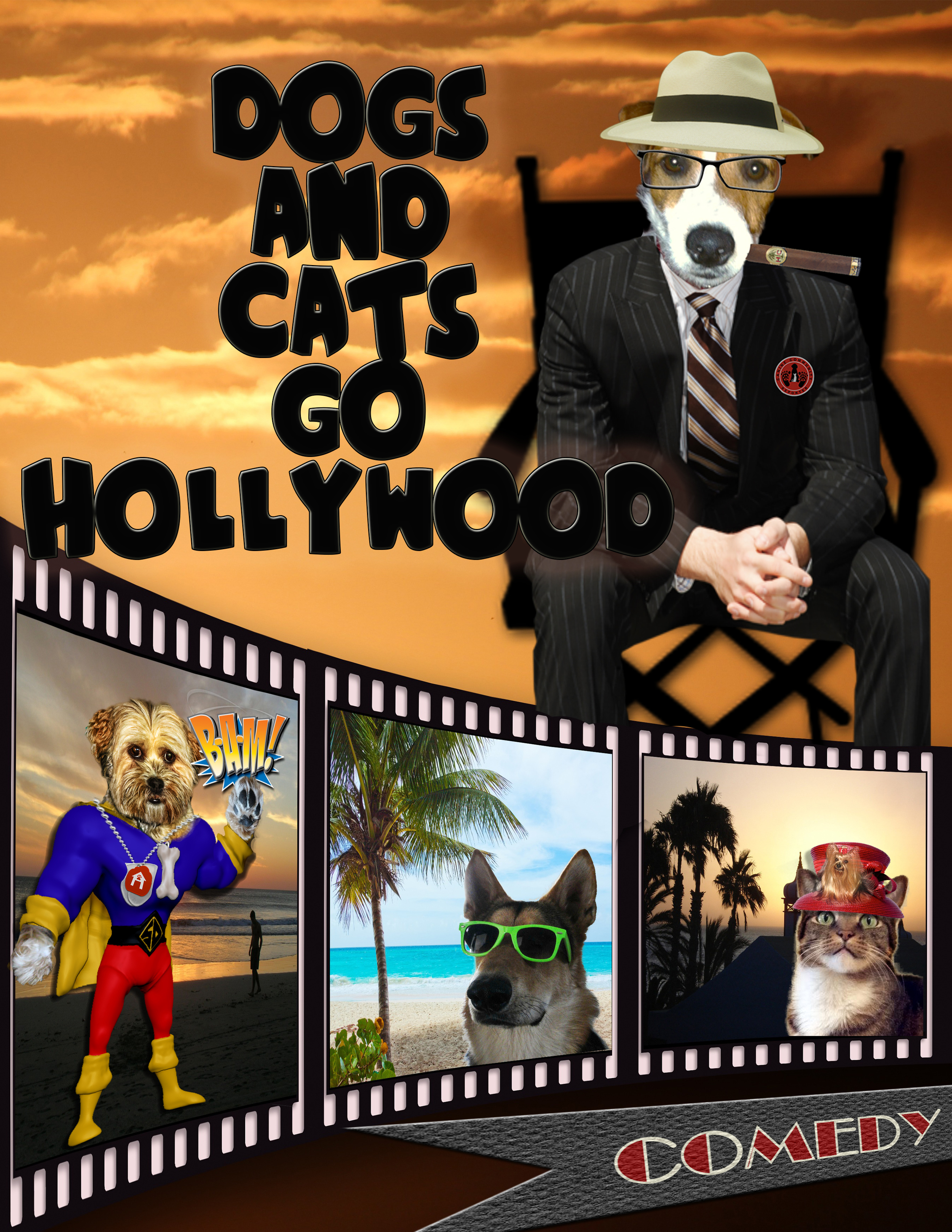 dogs and cats go hollywood.jpg