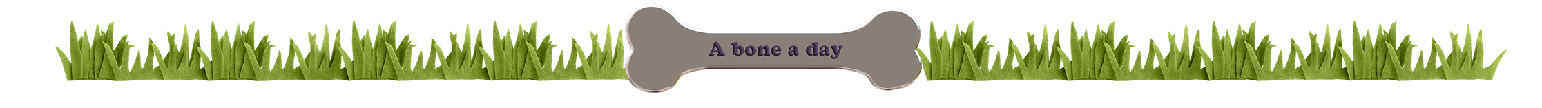 a bone a day.png