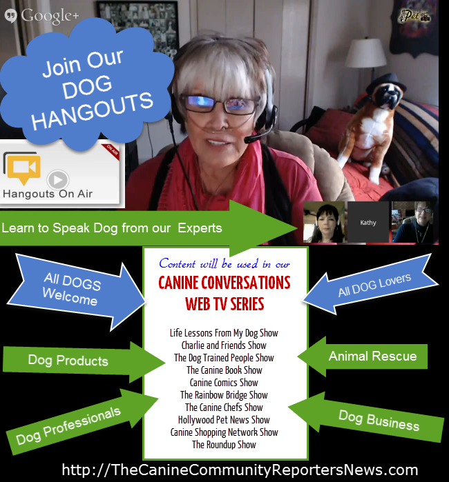 We have DOG HANGOUTS all the time. Be sure to check out schedule