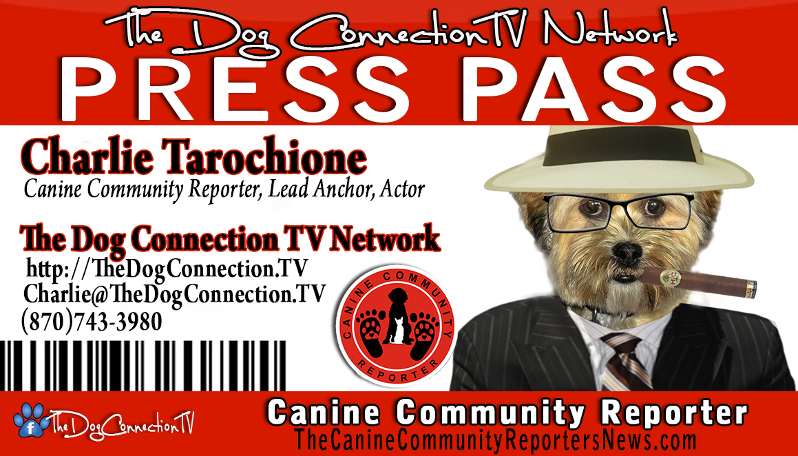 This is a sample of the PRESS PASS you will receive Digitally to post on your website and social media. Click the picture to enlarge